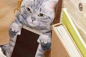 Tas Smart Phone Berbentuk Kucing yang Lucu