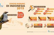 Temuan Jenis Baru, Jumlah Burung di Indonesia Bertambah