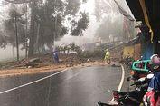 Pohon Tumbang, Akses Utama Malang-Lumajang Lumpuh