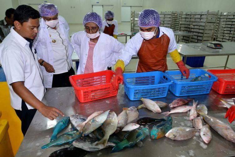 Menteri Kelautan dan Perikanan Susi Pudjiastuti meninjau coldstorage di Sentra Kelautan dan Perikanan Terpadu (SKPT) Natuna Kepulauan Riau