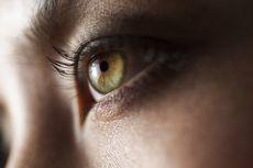 Selain di Otak, Prion Pembawa Penyakit Menular Juga Bersarang di Mata
