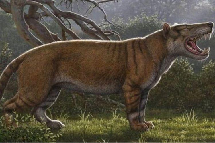 Spesies baru mamalia raksasa berhasil diidentifikasi setelah peneliti menyelidiki tulang-belulang yang disimpan selama beberapa dekade di laci museum Kenya.