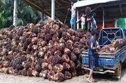 Darmin: Neraca Perdagangan Anjlok Bukan karena Struktur Ekonomi Kita Lemah