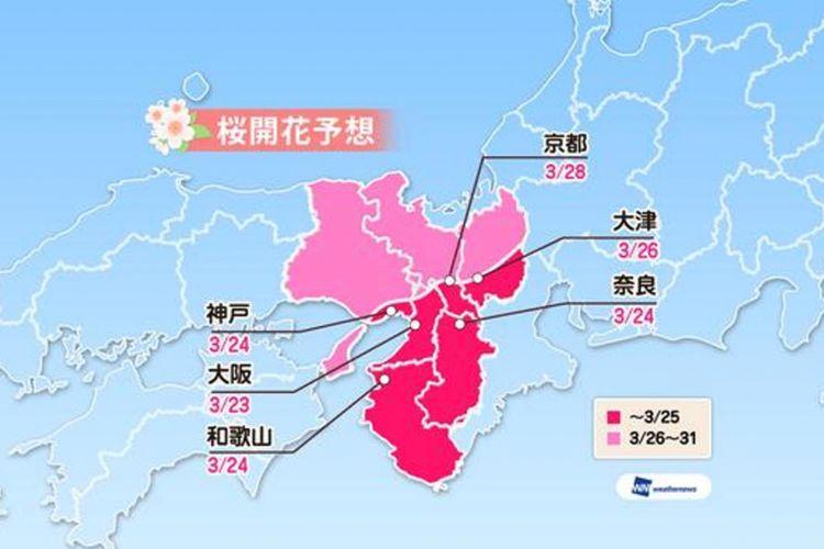 Prediksi sakura mekar di area Kinki (Prediksi diumumkan tanggal 16 Januari 2019/ Weather News)