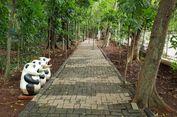 Begini Asiknya Menelusuri Hutan Kota di Jakarta Timur yang Menang Adipura