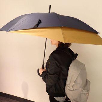 Back Protect Umbrella