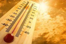 970 Kota di Seluruh Dunia Hadapi Suhu Ekstrem pada 2050, Ini Solusinya