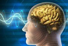Ahli: Selain Buruk untuk Jantung, Lemak Perut Juga Bikin Otak Menyusut