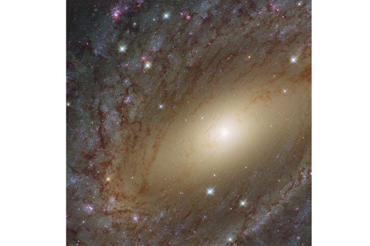 Gambar galaksi NGC 6744 diambil oleh Teleskop Hubble