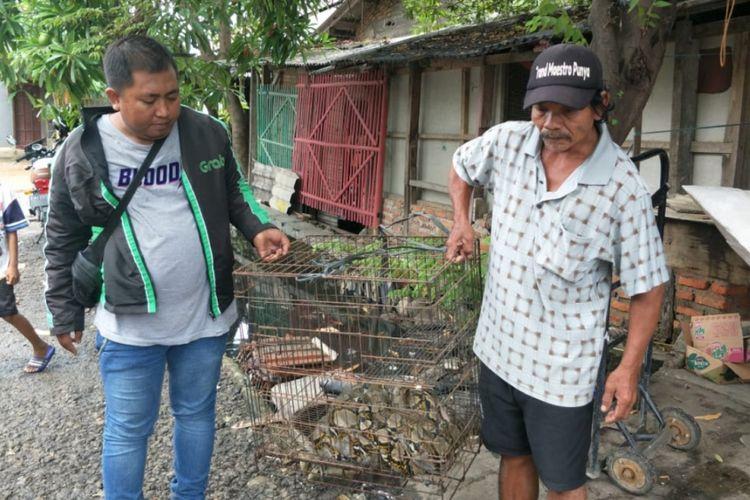 Dua warga Perumahan Graha Prima Sentosa, Kelurahan Kaliabang Tengah, Kecamatan <a href='https://medan.tribunnews.com/tag/bekasi' title='Bekasi'>Bekasi</a> Utara, Kota <a href='https://medan.tribunnews.com/tag/bekasi' title='Bekasi'>Bekasi</a> mengangkat kandang yang berisi ular sanca sepanjang 3,5 meter usai ditangkap karena masuk ke dalan rumah, Senin (28/1/2019).