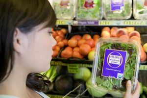 Studi Buktikan, Produk Organik Jauh Lebih Merugikan Bumi