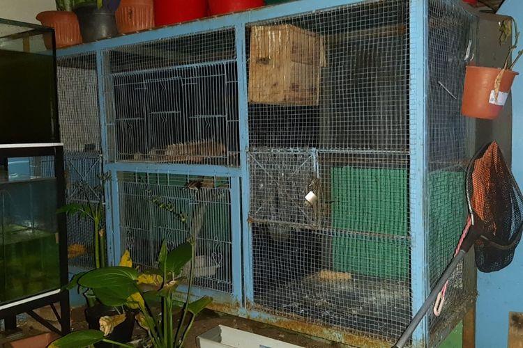 Tempat penitipan hewan Dzulfikar di Pondok Gede, Bekasi