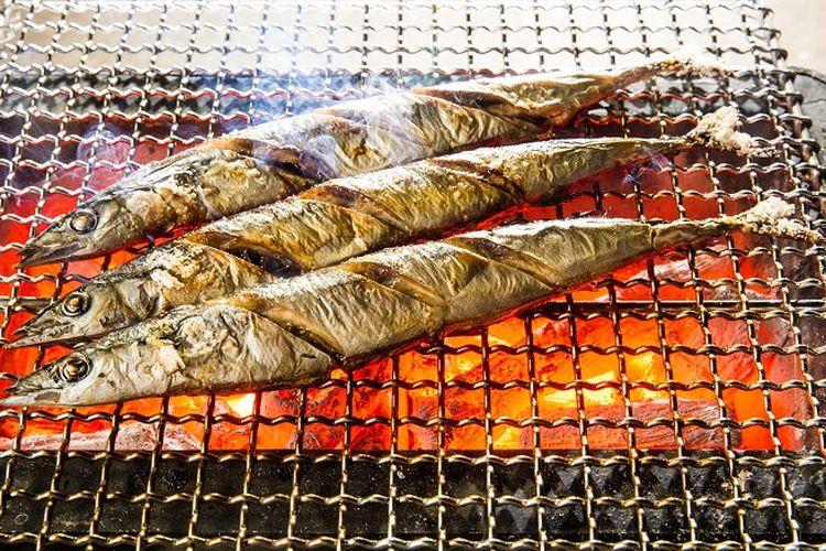 Ikan Sanma atau mackarel pike merupakan jenis ikan yang bisa ditangkap dalam jumlah besar pada musim gugur.