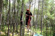 Asyiknya Berwisata Akhir Pekan Bersama Keluarga di Hutan Pinus