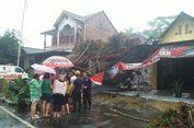 Angin Kencang Melanda 4 Wilayah Indonesia, Ada Apa?