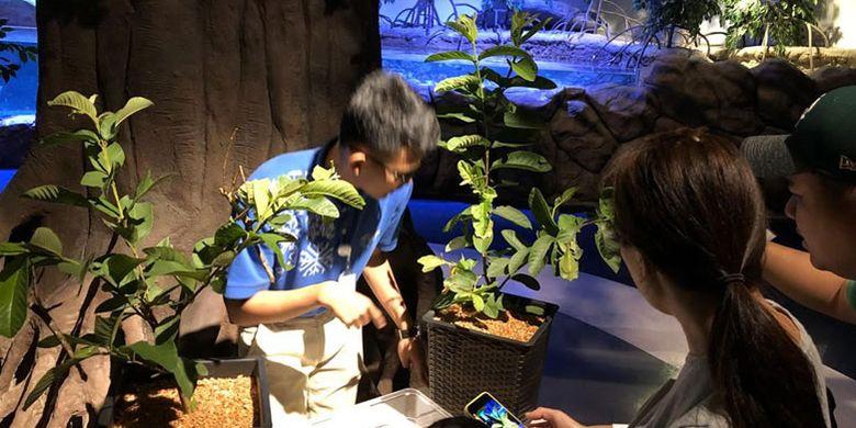 Pengunjung Jakarta Aquarium.