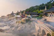 Mau Lolos Pembuatan Visa ke Korea Selatan? Perhatikan Hal Ini...