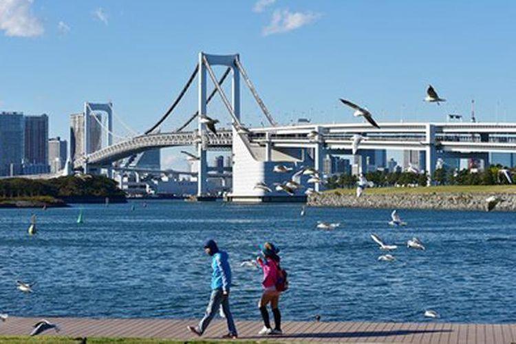 Jembatan Pelangi dan burung laut dapat dilihat dari Marine House.