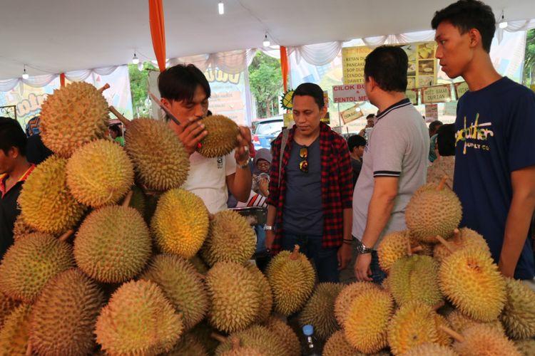 Mencium durian Bengkulu, di Festival Wisata Durian, mulai 20 November hingga 3 Desember 2017.