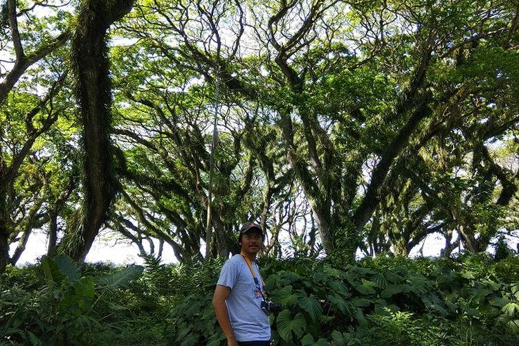Wisatawan berada di Hutan De Jawatan yang terletak di Desa Benculuk, Kecamatan Cluring, Kabupaten Banyuwangi, Jawa Timur atat sekitar 45 kilometer dari pusat kota Banyuwangi.