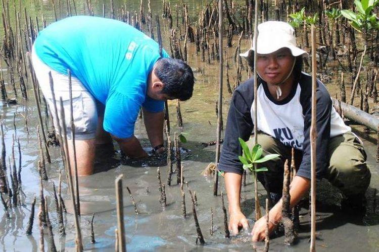 Koordinator Komunitas Mangrove Bengkulu Riki Rahmansyah saat menanam mangrove di salah satu pulau di Bengkulu