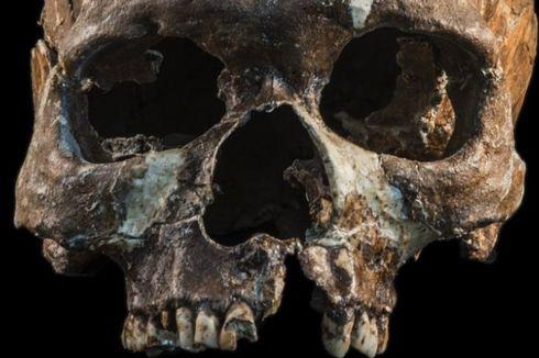 Siapa Leluhur Orang Asia Tenggara? Tes DNA Manusia Purba Menjawabnya
