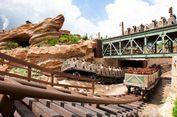 Perhatikan 5 Tips Ini sebelum Berkunjung ke Hongkong Disneyland