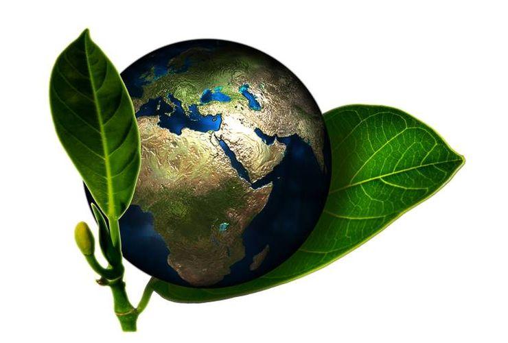 Hari Bumi, Begini Perubahan Planet Kita dalam 20 Tahun dari Antariksa