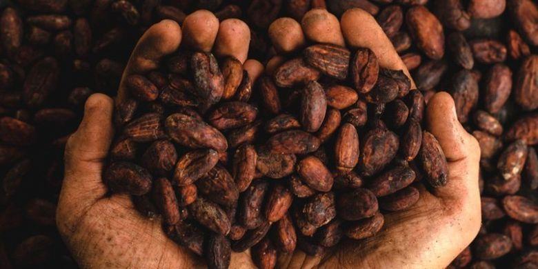 Penggunaan cokelat sudah dilakukan oleh masyarakat kuno sejak 5000 tahun yang lalu