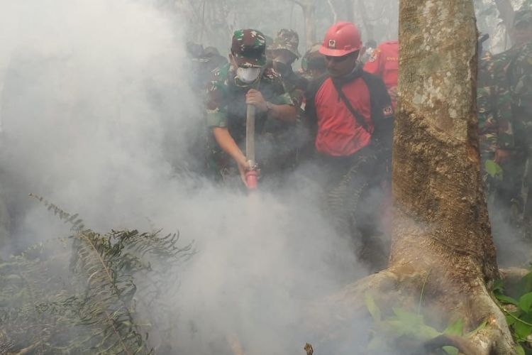 Panglima TNI Marsekal Hadi Tjahjanto mencoba memadamkan api di kebun karet warga saat meninjau karhutla di Kelurahan Terkul, Kecamatan Rupat, Kabupaten Bengkalis, Riau, Sabtu (23/2/2019).