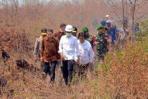 MA Tolak Kasasi Presiden Jokowi soal Kebakaran Hutan