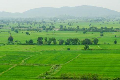 Bank Tanah Diharapkan Dapat Tekan Laju Inflasi
