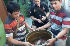 Sembunyikan Sepeda hingga Ikan Koi, Pencuri di Tangerang Akan Dites Kejiwaan
