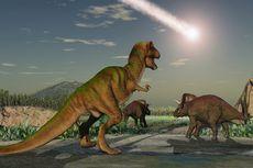 Bukan Salah Siapa pun, Dinosaurus Punah karena Mereka Sendiri