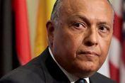 Menlu Mesir: Pengiriman Pasukan Koalisi Arab ke Suriah Memungkinkan