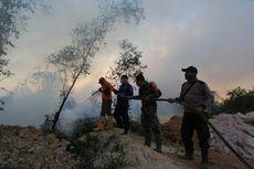 Walhi Dorong Pemerintah Padamkan Kebakaran Hutan di Riau