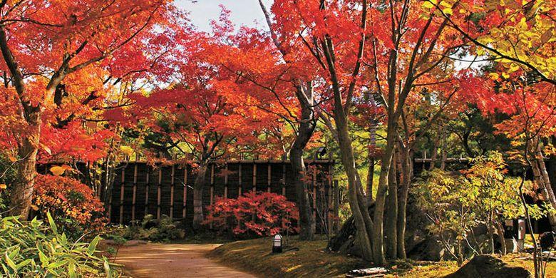 Taman Kokoen di Prefektur Hyogo, Jepang, ini melatarbelakangi Benteng Himeji.