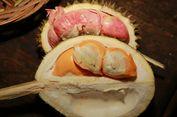 Kampung Durian di Songgon Banyuwangi, Cara Asyik Menikmati Liburan