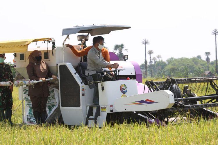 Menteri Pertanian Syahrul Yasin Limpo dalam salah satu kesempatan.