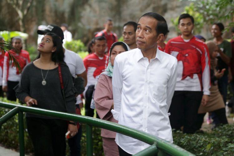 Presiden Republik Indonesia, Joko Widodo beserta istri serta dua anaknya berlibur ke Kebun Binatang Ragunan, Jakarta, Kamis (29/6/2017). Dalam liburannya ini Joko Widodo dan keluarga terlihat menyambangi Pusat Primata Schmutzer.