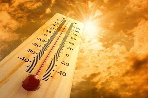 Bumi Makin Panas, Ini Prediksi PBB Suhu Global 5 Tahun Mendatang