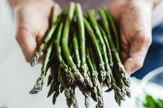 Mau Menanam Asparagus di Rumah? Berikut Caranya