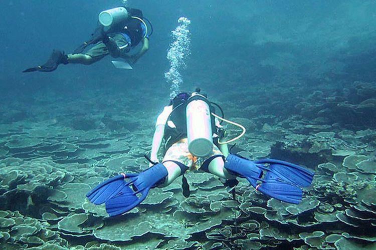 Penyelam melintasi rataan ekosistem terumbu karang yang masih sangat bagus di titik selam Mari Mabuk, Tomia, Wakatobi, Sulawesi Tenggara, Rabu (12/4/2017). Alam laut Wakatobi menjadi unggulan wisata bahari nasional yang perlu dikembangkan secara hati-hati agar tidak malah merusak ekosistem terumbu karang setempat.