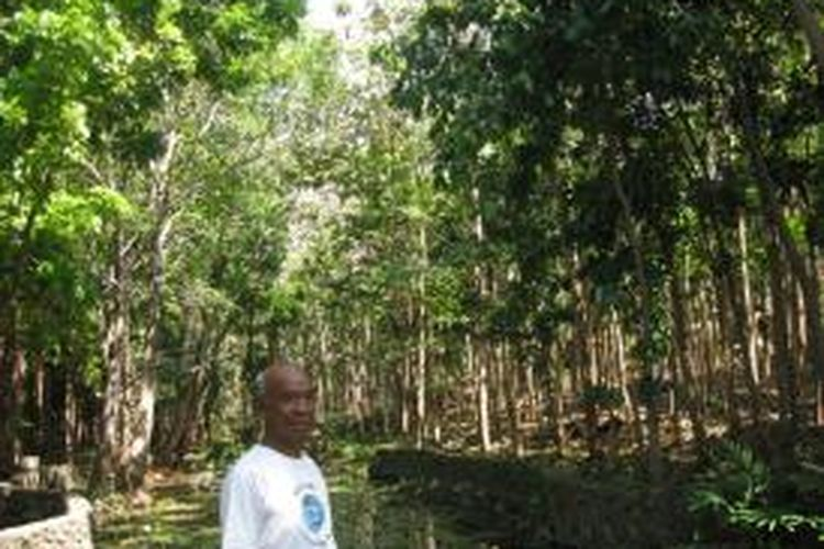 Pastor Marselinus Agot, SVD mendapat penghargaan Lingkungan Hidup dari Kementerian Kehutan Republik Indonesia di Bali belum lama ini. Pastor Marselinus dinilai berhasil melakukan penghijauan di lahan gundul di sekitar Kota Labuan Bajo, Kabupaten Manggarai Barat, NTT. Foto diambil belum lama ini. (Kompas.com/Markus Makur)