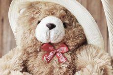 Berusia 116 Tahun, Ini Fakta Menarik Teddy Bear...