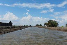 Kementan Targetkan 30.000 Hektar Lahan di Food Estate Kalteng Rampung Desember 2020