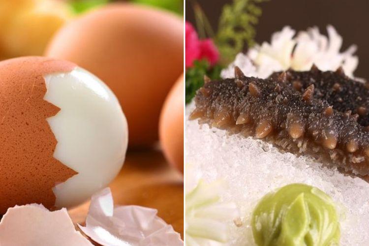 Ilustrasi telur dan teripang