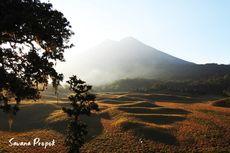 Kuota Wisata Non-pendakian Taman Nasional Gunung Rinjani Naik Jadi 50 Persen