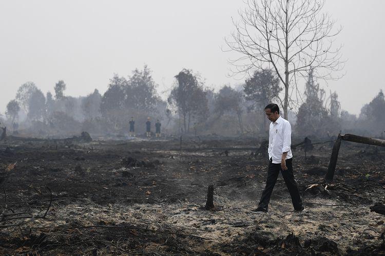 Presiden Joko Widodo meninjau penanganan kebakaran lahan di Desa Merbau, Kecamatan Bunut, Pelalawan, Riau, Selasa (17/9/2019). ANTARA FOTO/Puspa Perwitasari/aww.
