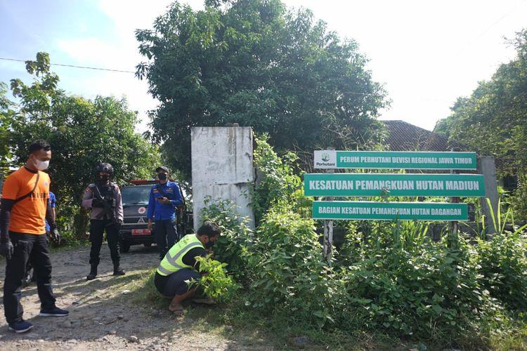 BERSIHKAN RUMPUT—Nampak seorang pelanggar protokol kesehatan yang terjaring operasi yustisi di Kabupaten Madiun diberikan sanksi membersihkan rumput, Kamis (8/7/2021).